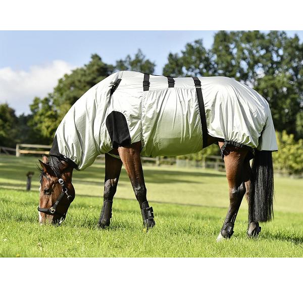 Strong eczeemdeken paard in weiland
