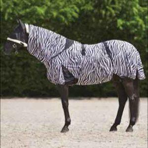 Zomereczeem bij paard en pony Advies Informatie en Tips Zomereczeemdeken