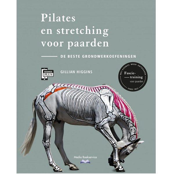 Pilates en Stretching
