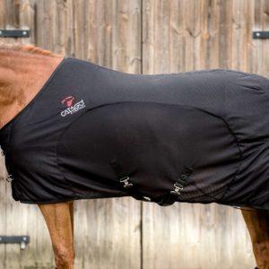 FIR-Tech Paard