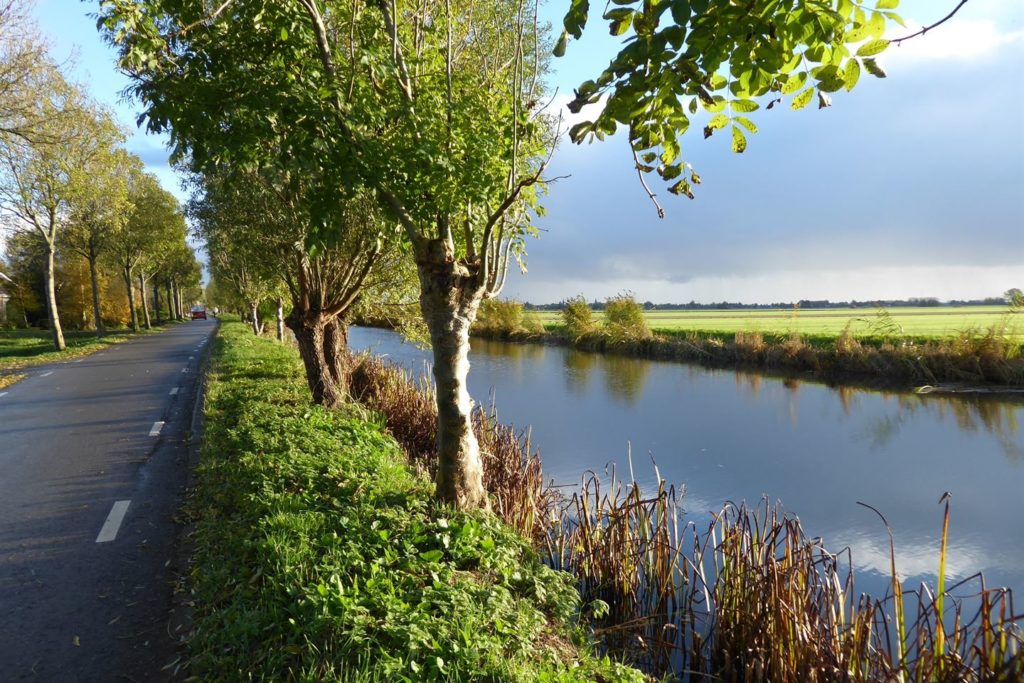 Atorka Ruitersport Linschoten