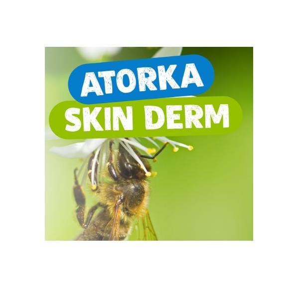 Atorka Skin Derm Spray
