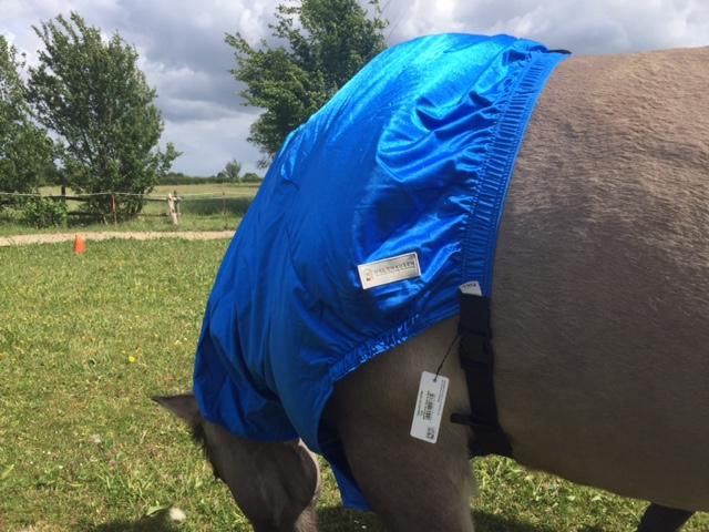 Halsdeken voor paard met zomereczeem