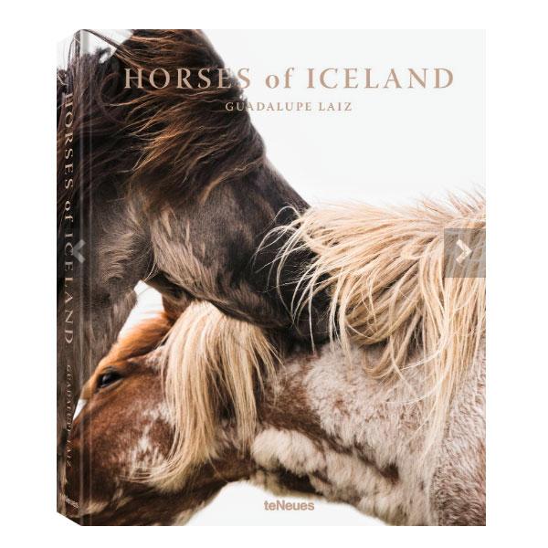 Horses of Iceland