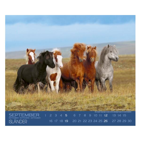 Boiselle IJslanderkalender 2021