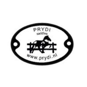 Logo Prydi
