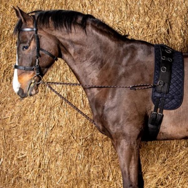 Harry's Horse Longeerkoord V-Line