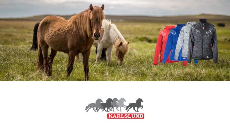 Karlslund banner