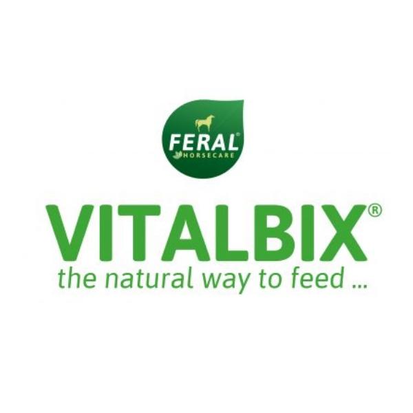 Logo Vitalbix
