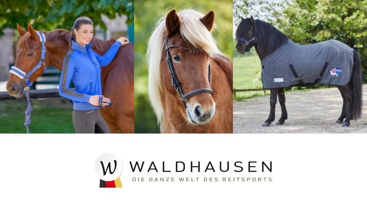 Banner Waldhausen