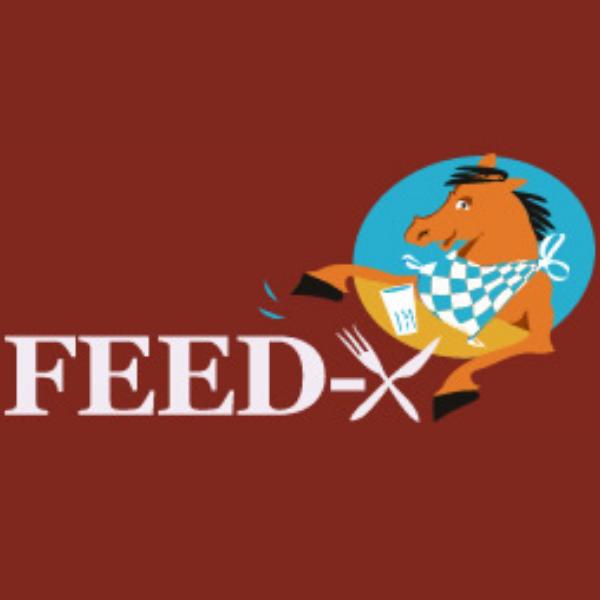 Feed-X gate timers logo