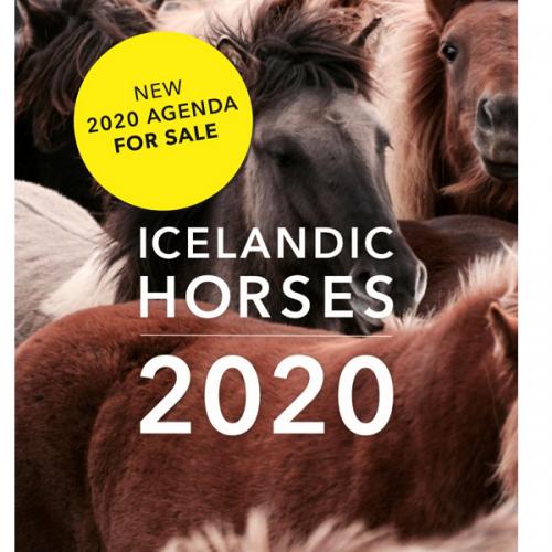 New Icelandic Horse Agenda for sale